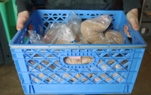 Volunteers pack up crates of gretchka or buckwheat for the trip to the Eastside Food Bank.